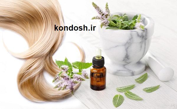 کاربرد روغن اسطوخودوس برای درمان ریزش مو