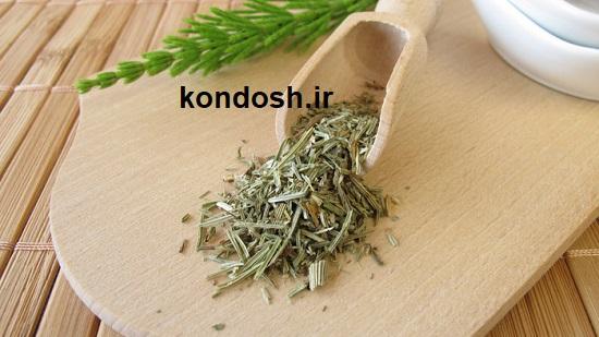 گیاه دم اسب برای رشد مو و ریزش مو