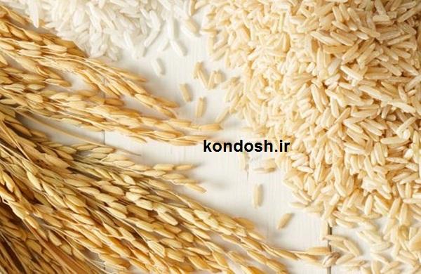 خواص و فواید سبوس برنج برای پوست و مو