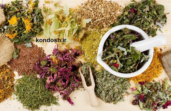 لیست گیاهان مفید برای مو