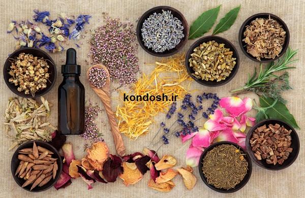 نسخه های مفید گیاهی برای تقویت ریشه مو